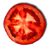 tomate-joao-parizotto